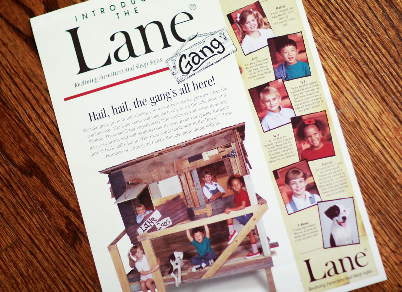 Lane Furniture advertising images - Ginger Wagoner, Photographer, Photosynthesis