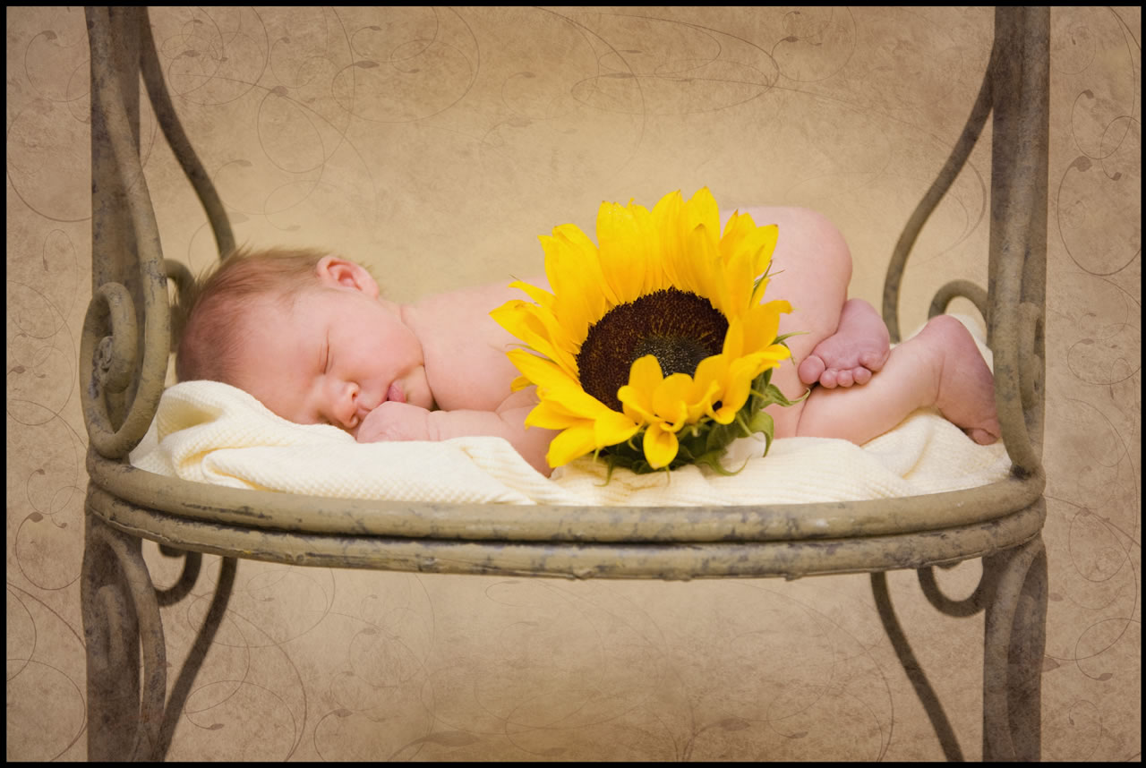 Newborn and sunflower - Ginger Wagoner, Photographer, Photosynthesis
